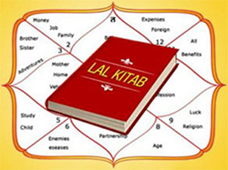 Rahu in Red Book | Lal Kitab | Lalkitab in Hindi | Lal Kitab Upay