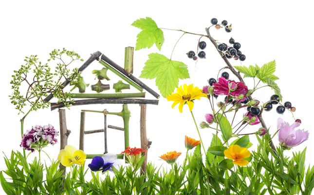 Vastu for Trees and Plants | Vastu | Vastu Shastra | Vastu